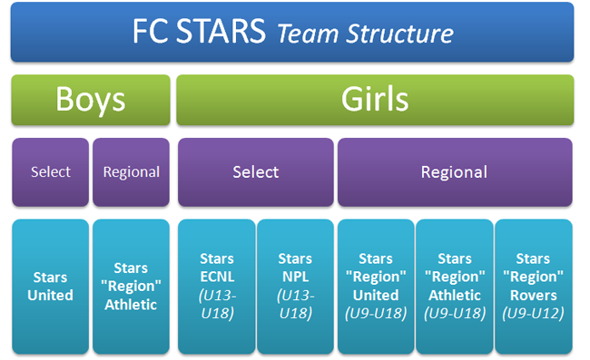 fc stars team structure